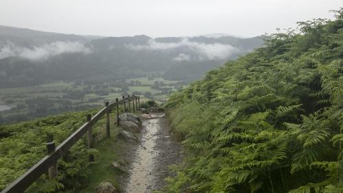 Catbell Path.jpg