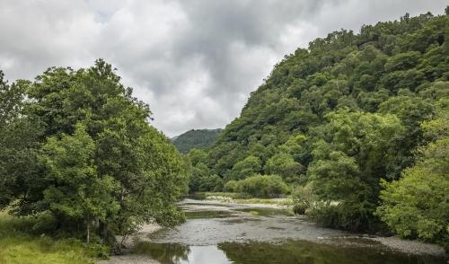 River at Grange.jpg