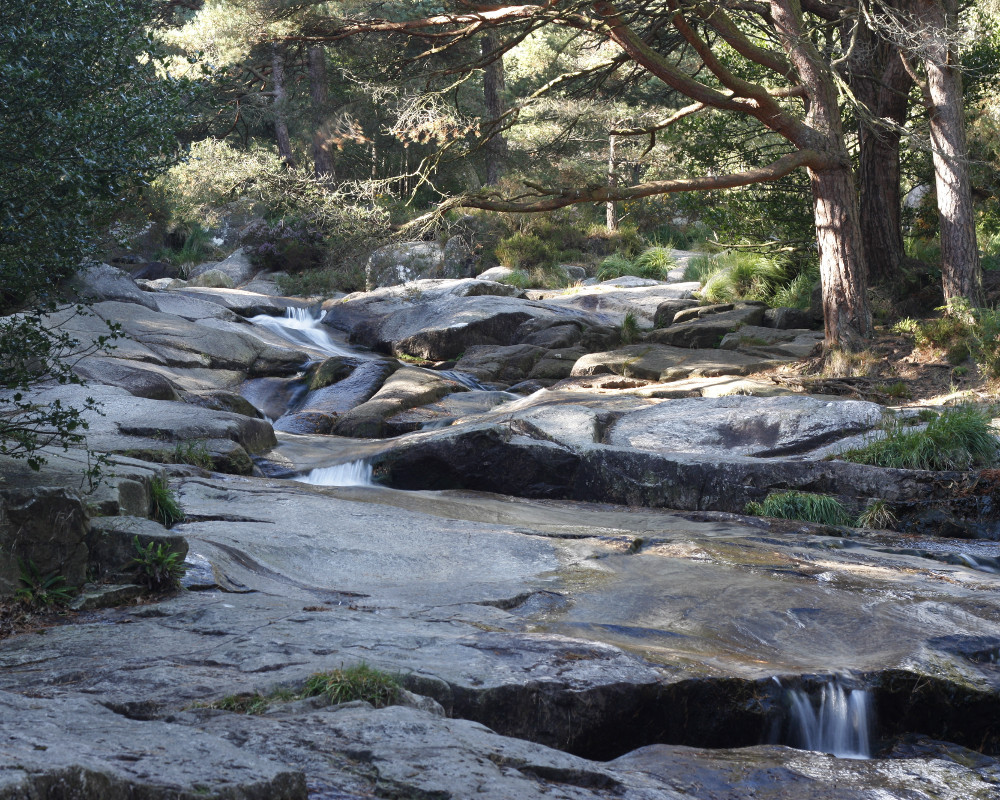 Tollymore-Waterfall.jpg.244da6da87624741170f7954003adf5e.jpg
