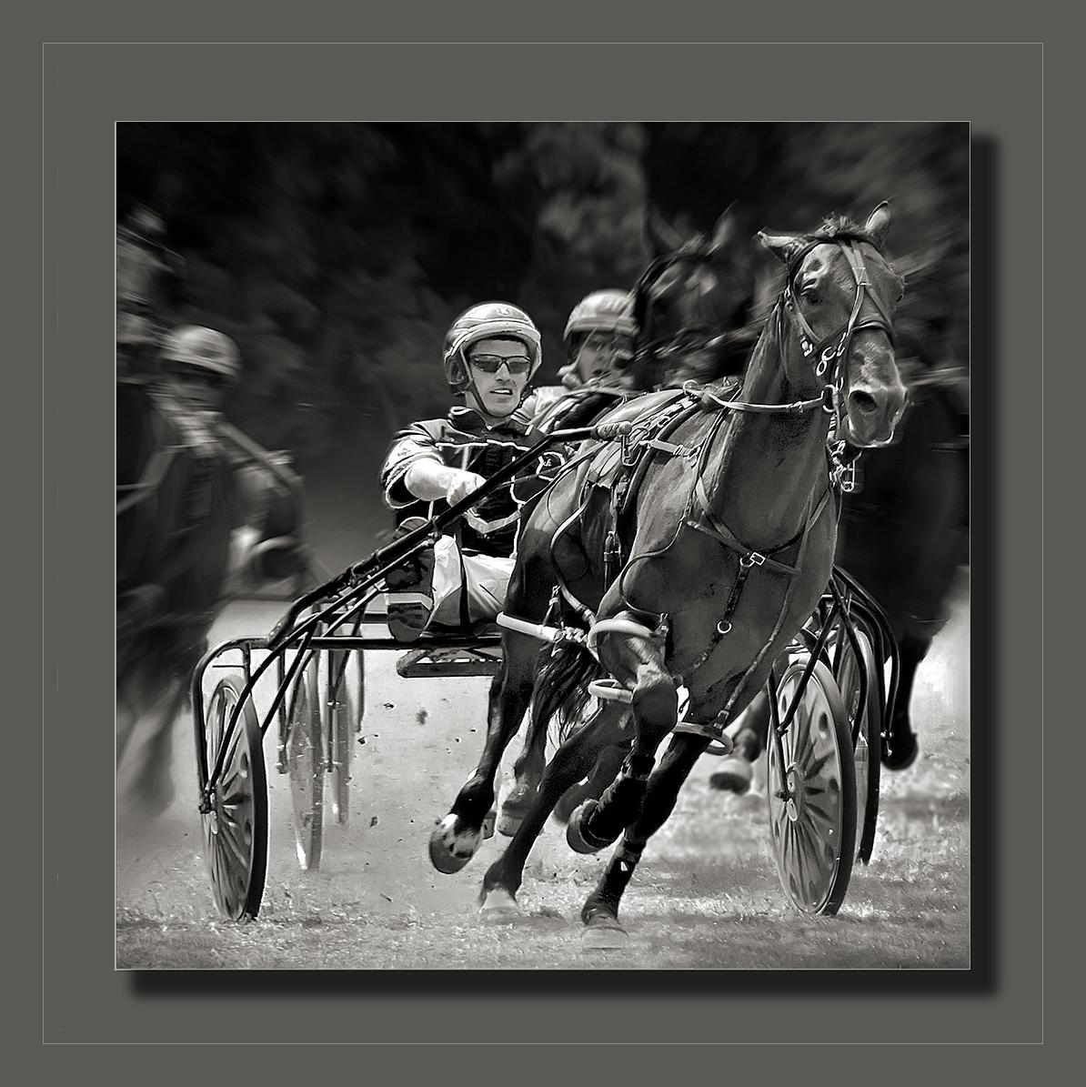 Trotter Racing