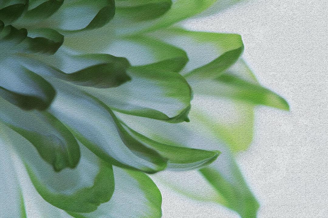 green and white.jpg