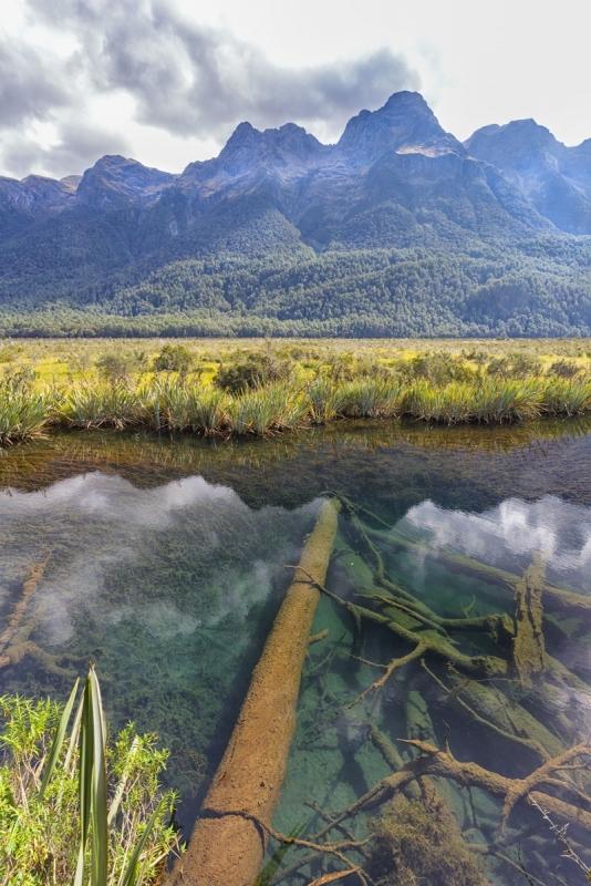 Fiordland432A0904website.jpg
