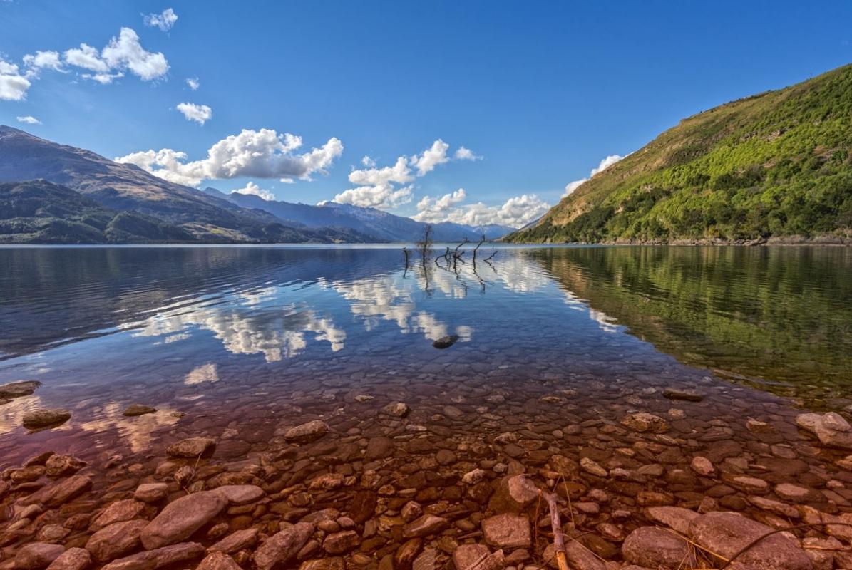 Lakewanaka432A0497website.jpg