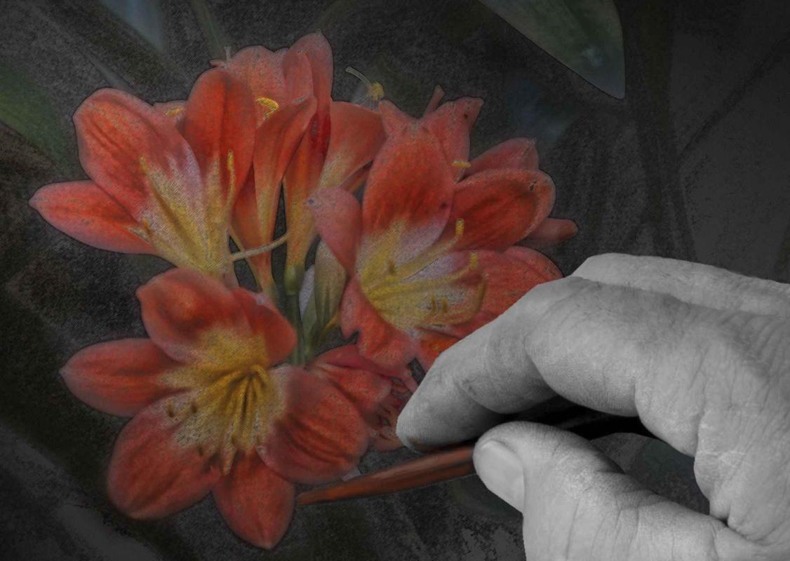 Pink Flower sketch.jpg
